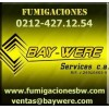 BAYWERE SERVICES C.A.