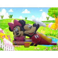 Castillo Mickey y Minnie