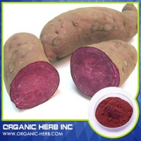 Food Grade Purple Sweet Potato Pigment Powder